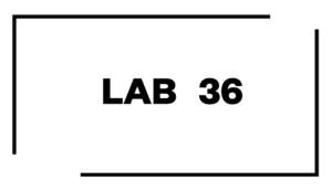 LAB 36web